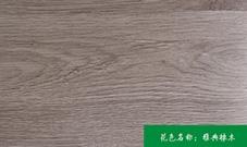 橡木生态板